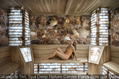 Cabine de Sel, Spa Deep Nature Center Parcs Bois aux Daims