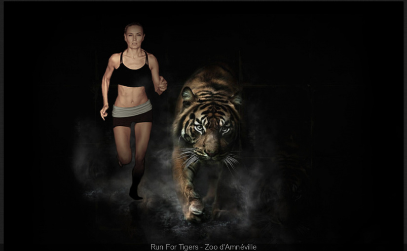 Run For Tigers